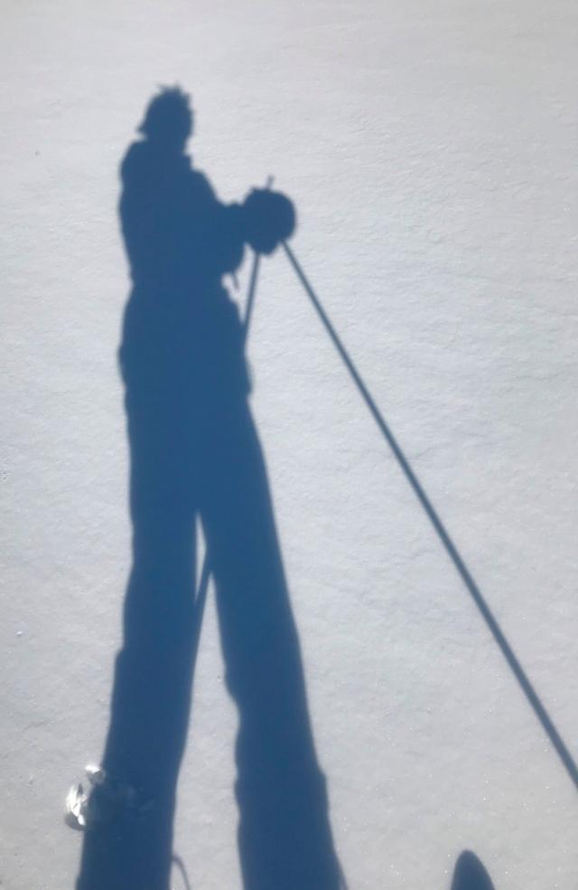 Early Morning X Country Ski - ©Brenda Harvey-Jones