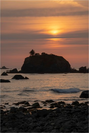 Sunset With Cormorant, Crescent City, CA - Derek Chambers