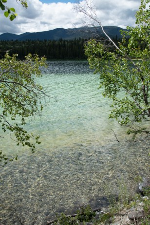 Clear Water - Pamela Faiers