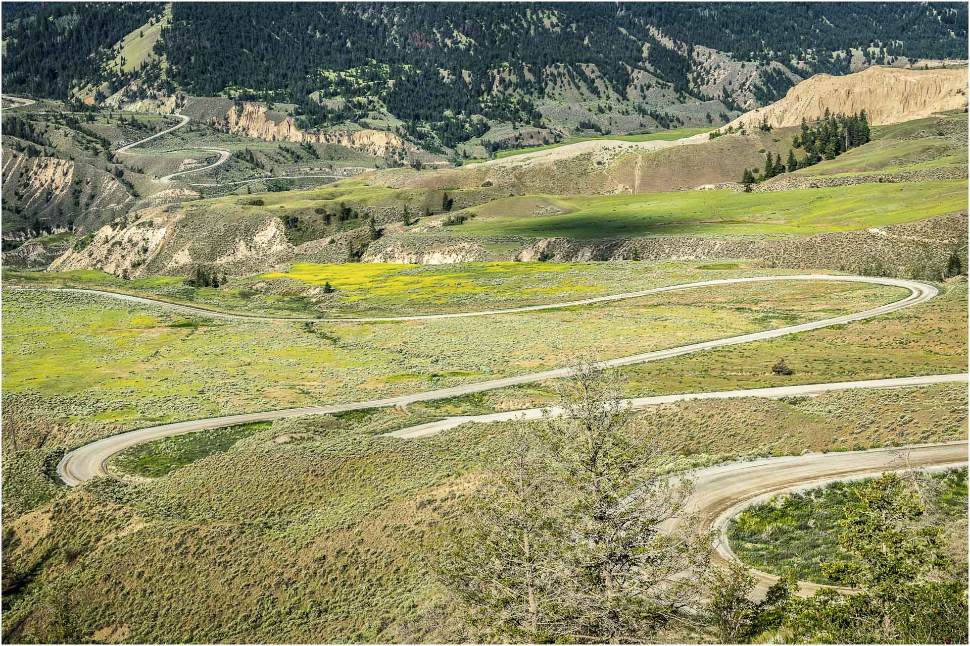 Farwell Canyon1 © Larry Citra
