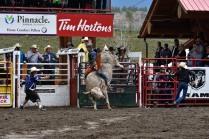 Williams Lake Stampede, Bull Riding - Bill Melnychuk