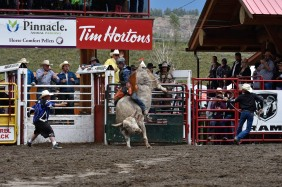 Williams Lake Stampede, Bull Riding - Bill Melnychuk