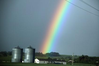 Rainbow - Doug Boyce