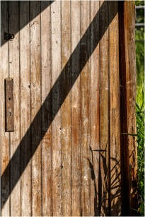 Shadows © Larry Citra