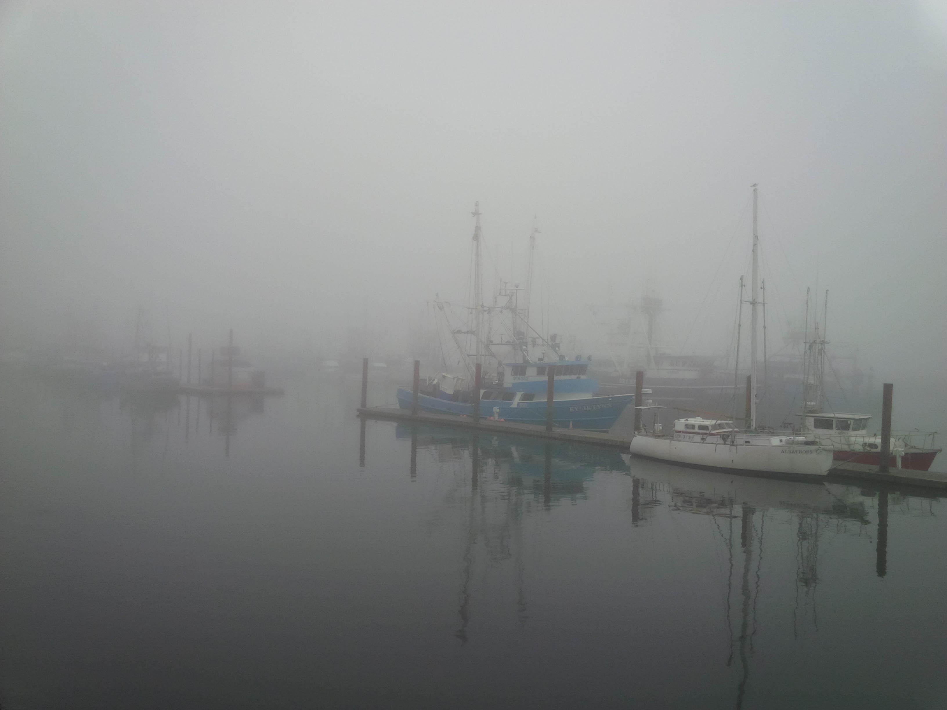 Newport, Oregon fishing fleet-Gary Hardaker