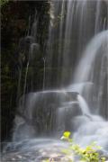Bijoux Falls Bridal Veil taken at Bijoux Falls Provincial Park, BC - Gloria Melnychuk 2037-039