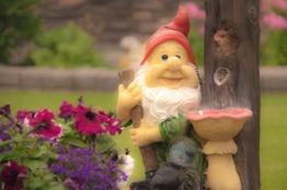 #32 Garden Gnome AMBROWN
