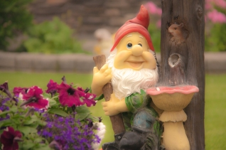 #32 Garden Gnome AMBROWN