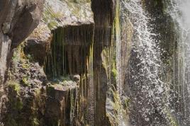 Deadman's Falls Detail 2 - DMHopp