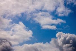 Scavenger hunt: Just the sky - Tamara Isaac