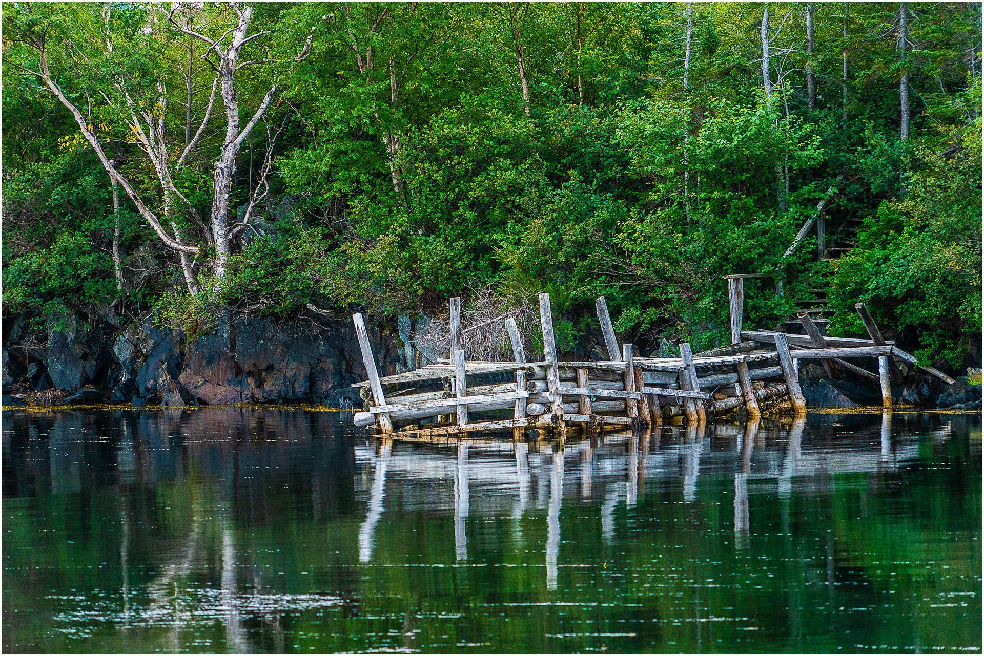 Newfounland © Larry Citra