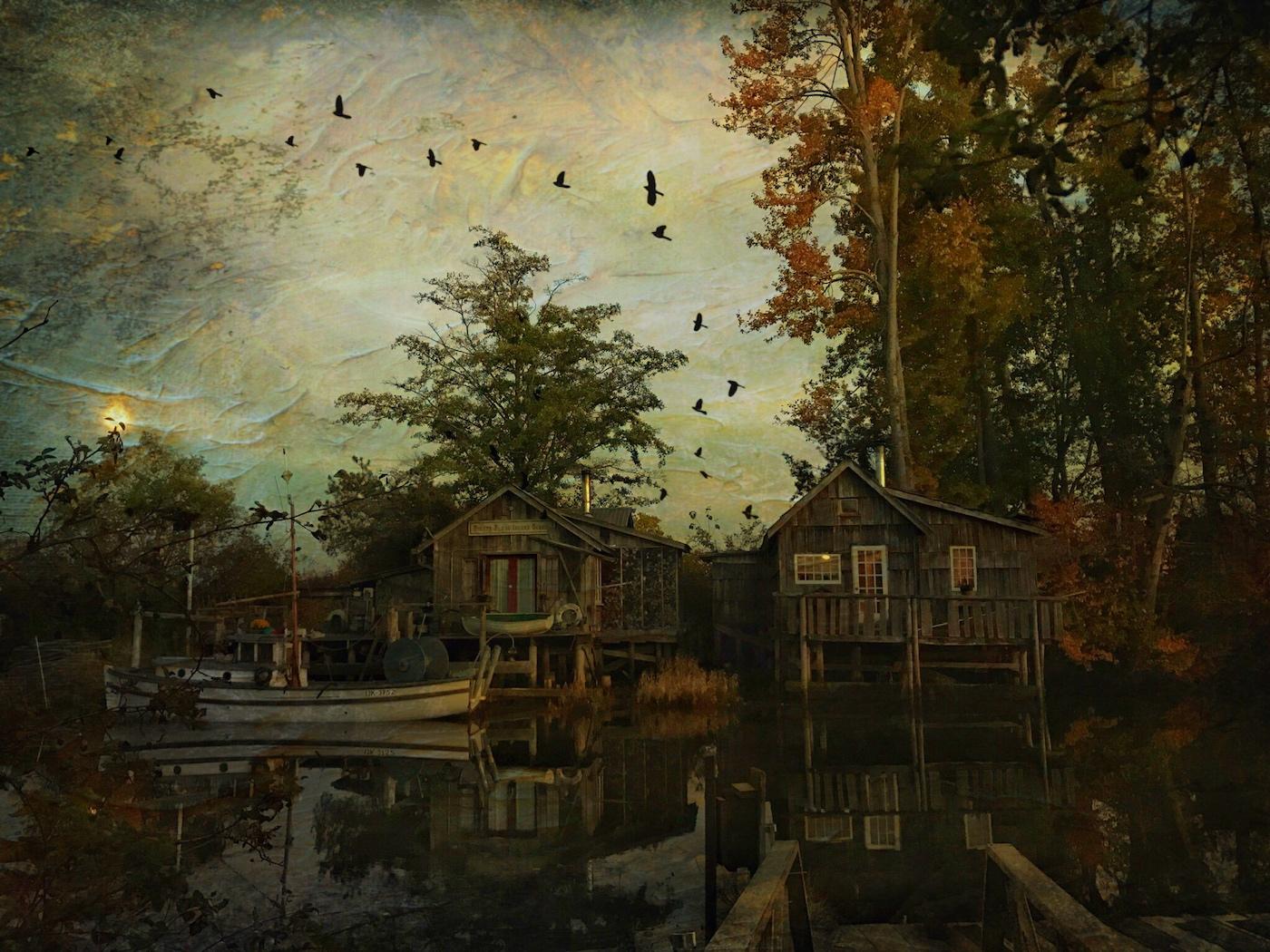 Finn Slough, Altered Reality - Carol Jackson