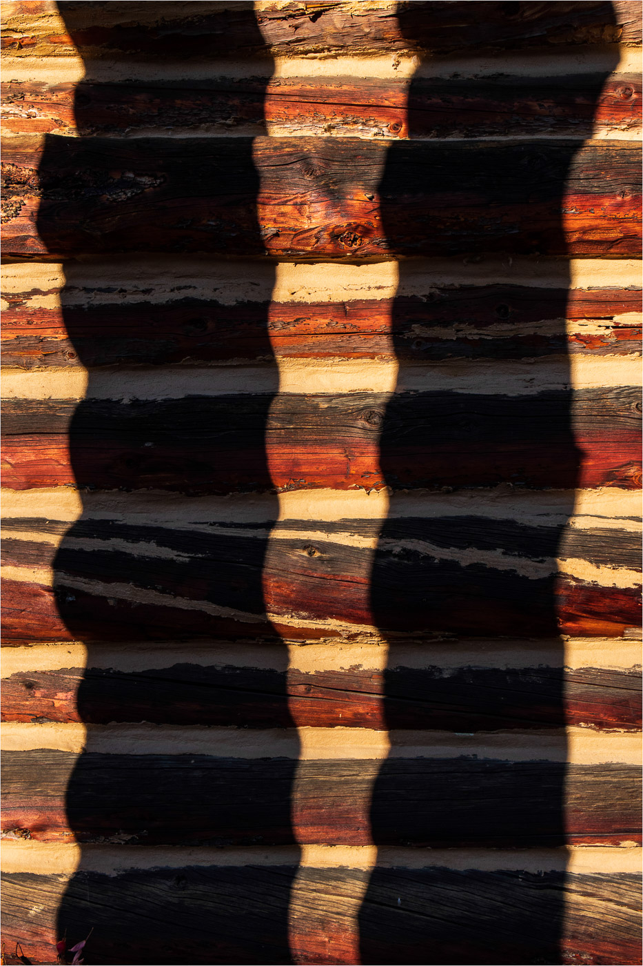 Giants Shadows - Sharon Jensen