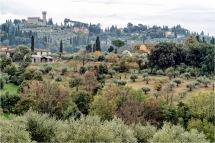 Tuscan Countryside - Outskirts of Florence - Pitti - Derek Chambers