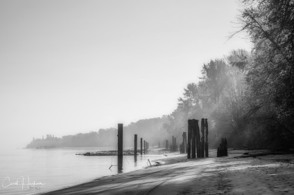 Sunbeam At The Beach - Carol Jackson