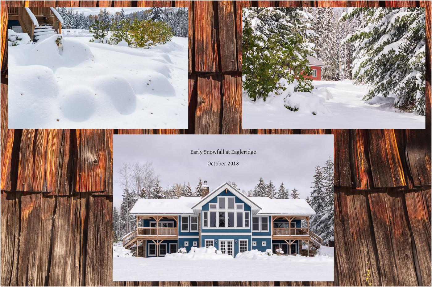 Eagleridge Collage - © Sharon Jensen