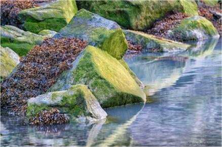 Angles of Time at Tallheo © Gloria Melnychuk ~ Tallheo Cannery, Bella Coola