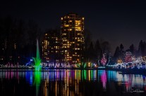 Lafarge Lake Lights - Carol Jackson