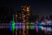 Lafarge Lake Lights - Carol Jackson