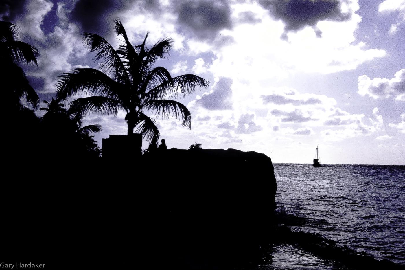 Tropical Twilight Cozumel- Gary Hardaker.jpg