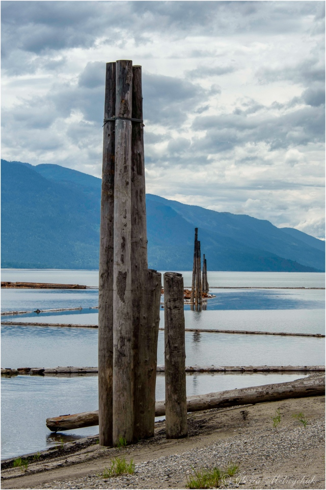 Columns and Angles, Upper Arrow Lake ~ Gloria Melnychuk