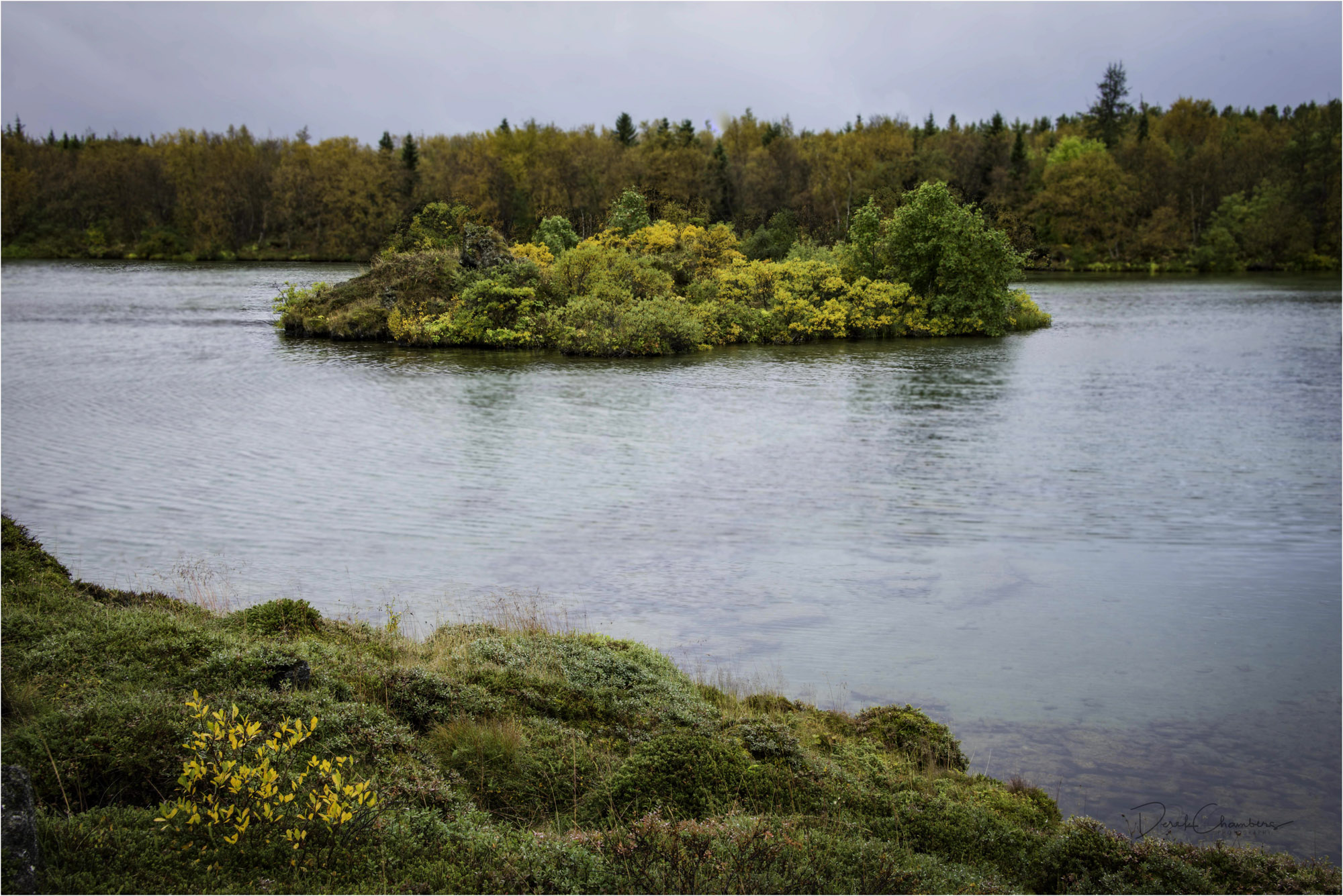 Fall colours in September - Myvatn area, Iceland - Derek Chamber