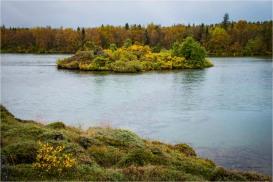 Fall colours in September - Myvatn area, Iceland - Derek Chambers
