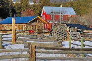 Kelly Lake Roadhouse - Cliff Torsteinson