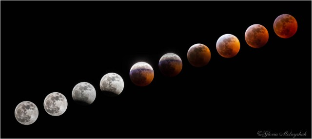 Super Blood Wolf Full Moon Composite