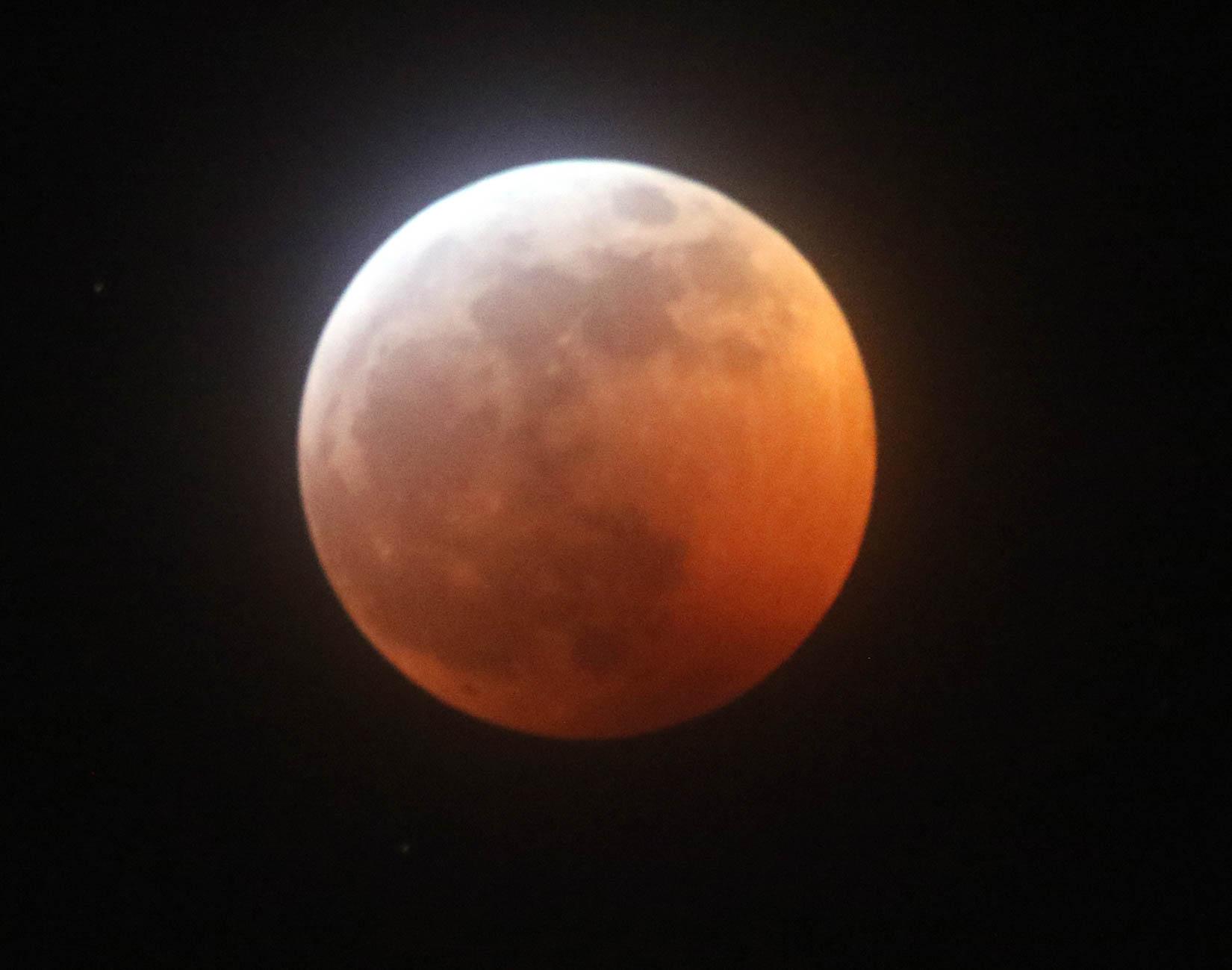 Wolf Blood Moon - Doug Boyce