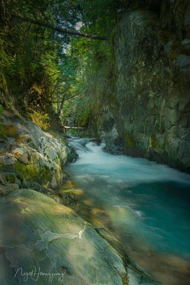 Creek-  Nigel Hemingway