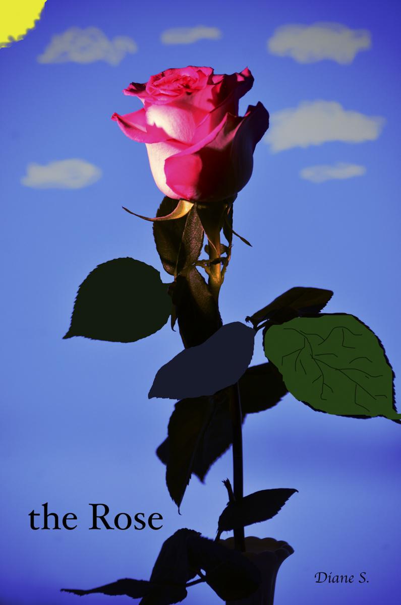 Diane S. DSC_6254-Edit-Edit-Edit.psd rose