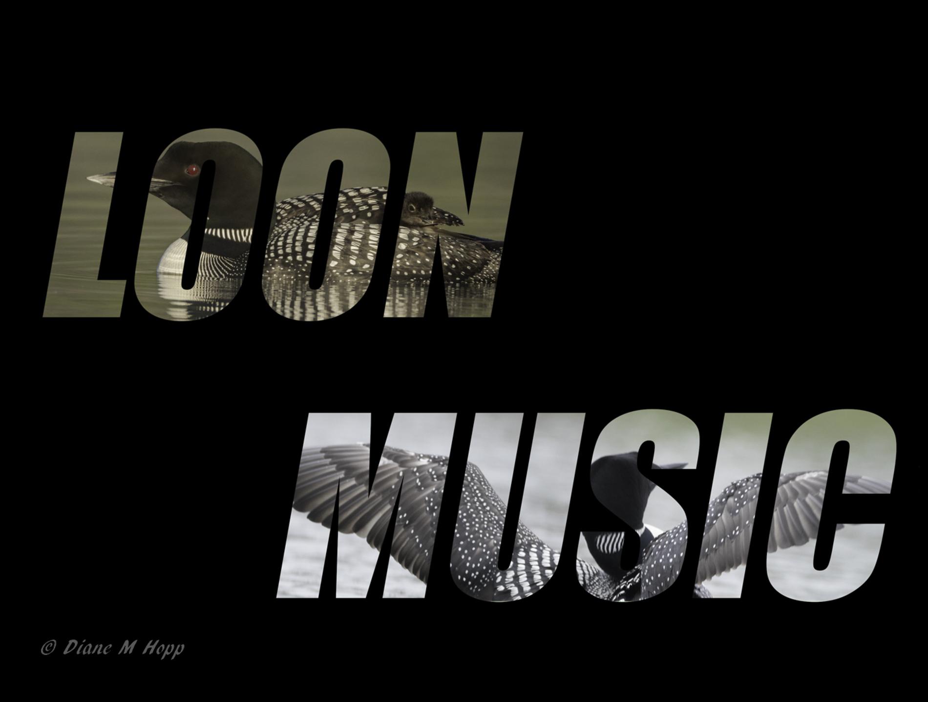 Loon Music