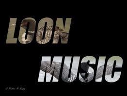 Loon Music - Text - DMHopp
