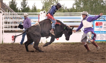 BullRider and Clown - Derek Chambers