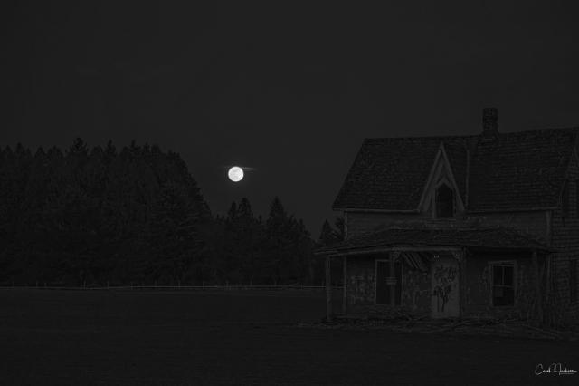 BW Full Moon Rising-Carol J Jackson