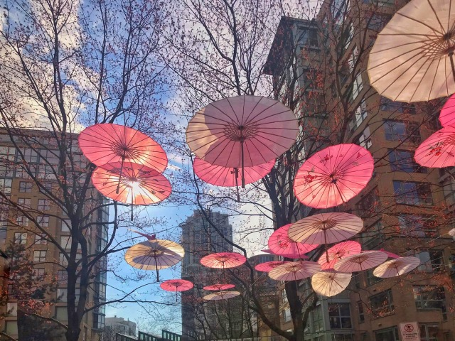 Cherry Blossom Inspired Umbrellas-Carol J Jackson