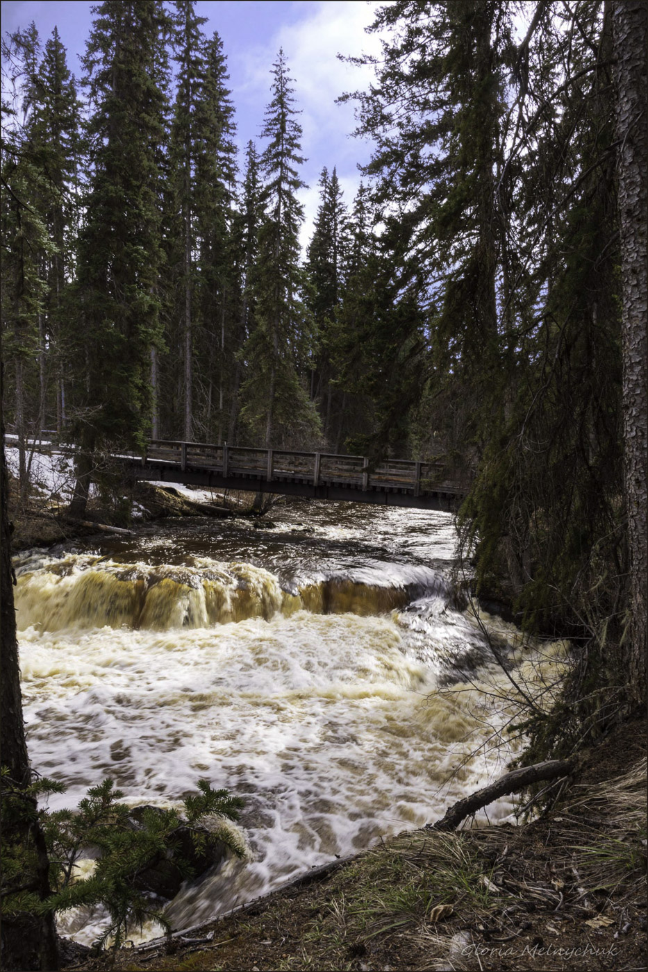 Moffat Creek Muddy Waters - Gloria Melnychuk