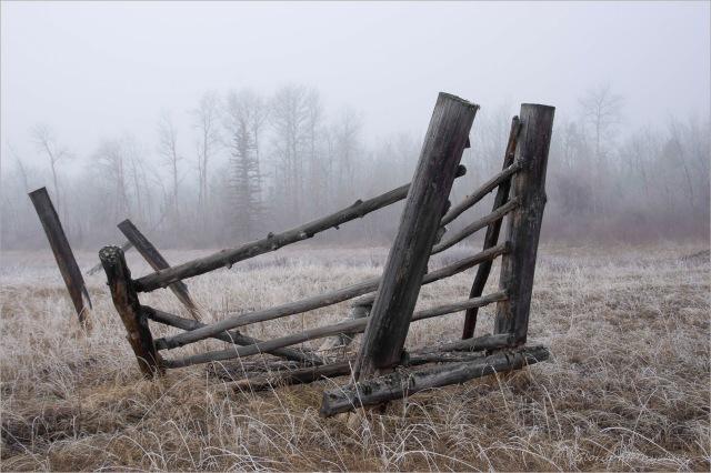 Old Cariboo Loading Chute - Gloria Melnychuk