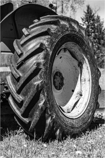 04 Tractor Tire - Gloria Melnychuk