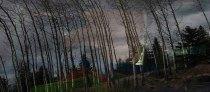 10 Reflection - Derek Chambers