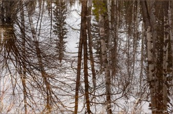 #10 Reflection ©Gloria Melnychuk