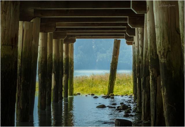 Pilings-Tallheo Cannery - © Sharon Jensen