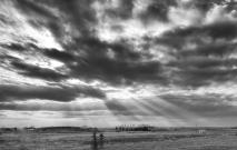 Sun Rays 18 - Doug Boyce