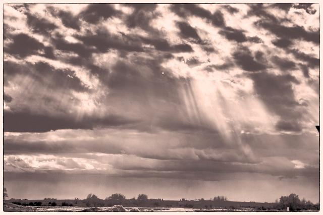 Sun Rays - Doug Boyce