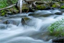 13 Movement - Eakin Creek Canyon PP - Derek Chambers
