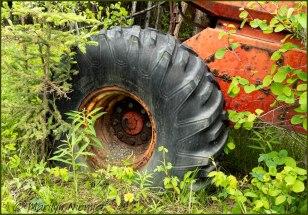 #4 Tractor Tire - Marilyn Niemiec