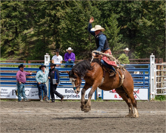Clinton May Ball Rodeo - Gloria Melnychuk
