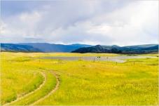 Gang Ranch Meadows - Derek Chambers
