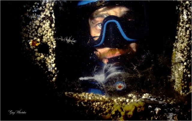 Diver as seen through porthole- Gary Hardaker